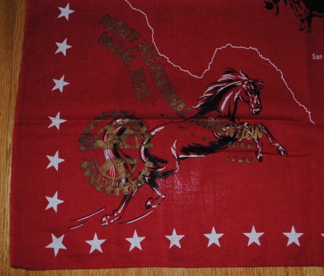 Horse - LBC