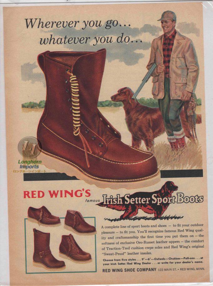 1959年 アイリッシュセッターの雑誌広告